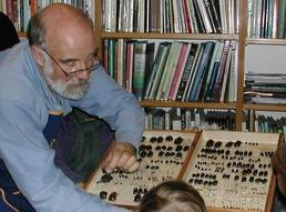 beetle collection with Bernard Doube